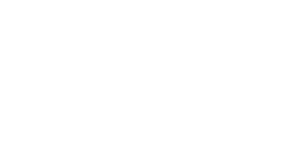 fistvision-logo